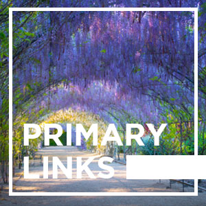 Adelaide Primary Links - 03/10/2019