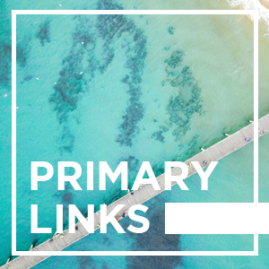 Adelaide Primary Links - 12/11/2020