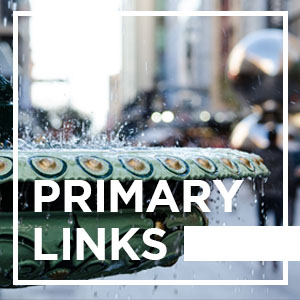 Adelaide Primary Links - 13/11/2019