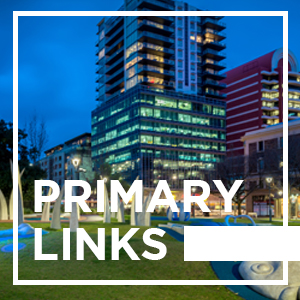 Adelaide Primary Links - 01/10/2020
